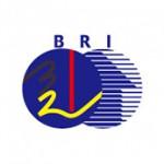logo-bri2